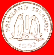 § PENGUINS: FALKLAND ISLANDS ★ 1 PENNY 1992! LOW START ★ NO RESERVE! - Falkland Islands