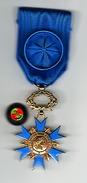 Médaille _ Ordre Nationnal Du Mérite _Chevalier _ Avec  Rosette De Boutonniére (boite Origine ) - France
