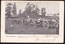 Pretoria, Een Ossenwagen (01484) - Afrique Du Sud
