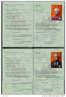 REISEPASS / PASSPORT - Deutschland, Ehepaar, DDR-Visa, Komplett, + Schwerbehindertenausweis 2003 - Historische Dokumente