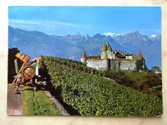 Les Vendanges (Château D'Aigle) - VD Vaud