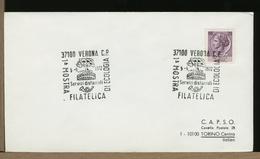 ITALIA -  VERONA  -  TEATRO THEATER THEATRE - ARENA  ROMANA - Archeologia