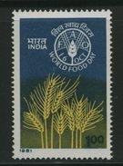 FAO -   INDIA - Tegen De Honger