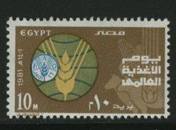 FAO -   EGYPT   FOOD - Tegen De Honger