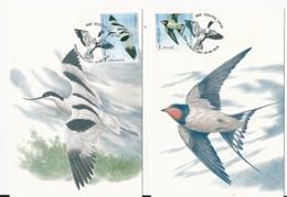 Belgique:  10 Cartes Maxi Buzin Et Meersman ( Le Nouveau Zwin) 4601/ 4610 - 1985-.. Oiseaux (Buzin)