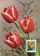 16518 Germany Ddr, Maximum, 1961,  Gartenbauaustellung, Tulipan,  Mi-854 - DDR