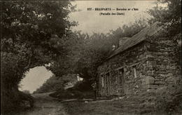 29 - BRASPART - Baradoz Ar C'haz - Paradis Des Chats - France