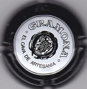 CAVA GRAMONA ARTESANIA - Schuimwijn