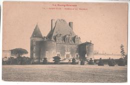 CP SAINT ELIX ENSEMBLE DU CHATEAU  (31 Haute Garonne) - France