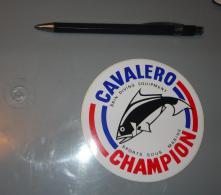 Autocollant 051, Sport Plongée Sous Marine Cabalero Champion - Stickers