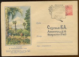 Stationery Used Mail 1957 Cover USSR RUSSIA Week Letter Sukhumy Caucasus Georgia Botanic Garden - 1923-1991 USSR
