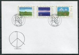 2000 Liechtenstein Art FDC