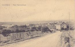 Louveigné - Vue Panoramique (animée, Edit  Georis-Collet, 1931) - Sprimont