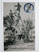 9 Telegraph Company / Brzesc   /  Poland Army 1918-39 / Reproduction - Regimenten