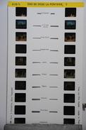 LESTRADE :  618 B  ZOO DE DOUÉ LA FONTAINE 2 - Stereoscopes - Side-by-side Viewers