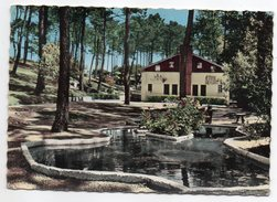 SAINT HILAIRE DE RIEZ--1966-Forêt De SION--Camp Aunis SNCF ,cpsm 15 X 10 éd Robuchon - France