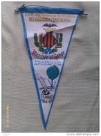 Banderín Ayuntamiento De Valencia. Delegacion De Educacion. España. 1964-65 - Escudos En Tela