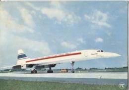 CPSM - CONCORDE - AVION Supersonique .... - Edition P.I - 1946-....: Modern Era