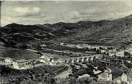-ref-P56 -  Herault - Roquebrun - Avenue D Olargues Et Cessenon - Climat De L Oranger - Vallee De L Orb (amont) - - France