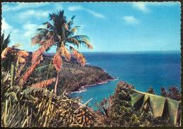 214 - Côte Au Vent - Guadeloupe