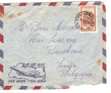 TP Masque 291A S/L.Avion C.Nya-Lukemba 14/10/1953 V.Liège PR3799 - Poste Aérienne: Lettres