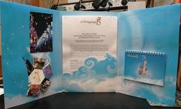 Dossier Presse Disney 15 Ans Disneyland Paris Triptyque Avec CP Château Calendrier 2008 Avec Roi Lion Cinéma - Autres Collections