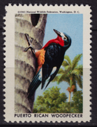 Puerto Rico WOODPECKER / BIRD - National Wildlife Federation NWF - 1963 USA - LABEL / CINDERELLA / VIGNETTE - MNH - Passereaux