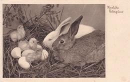 Feldpost WW2:  Easter Postcard From Infanterie-Regiment 317 (12./III) FP 12338E P/m Köln-Dellbrück 22.3.1940 (T3-9) - Militaria