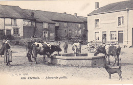 Alle S/Semois - Abreuvoir Public (top Animation, Vaches, Chien, DVD 11715) - Vresse-sur-Semois