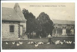 CPA 28 - AUNEAU - LA CULTURE EN BEAUCE - LES VOLAILLES (ferme) - Auneau