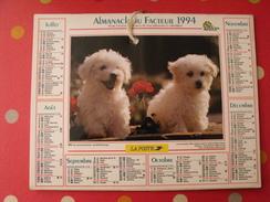 Calendrier Illustré En Carton De 1994. Almanach Des PTT Postes Facteur. Chien Chat - Calendriers