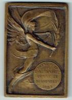 Médaille Bronze. Sport. Athlétisme. Lancer Du Disque. Grand Prix Adm. Commune De Schaarbeek. 1935. 40 X 60 Mm. 56 Gr - Belgique