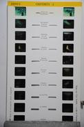 LESTRADE :  1099  B  CAUTERETS 2 - Visionneuses Stéréoscopiques