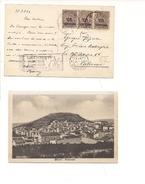 1588) 1924 Annullo Meccanico Targhetta RINASCENTE RIESI CALTANISSETTA FLOREALE - Storia Postale