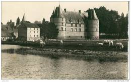 Jaligny .  La Besbre Et Le Château .  Animée .  BELLE CPSM . - Autres Communes