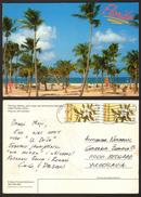 USA Florida Palm Trees Beach Stamp    #21410 - Estados Unidos