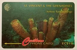 Yellow Tube Sponge 142CSVB (Small Font)
