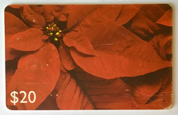 Poinsettia Christmas - St. Vincent & The Grenadines