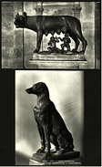 2 X Roma Rom - Museo Dei Conservatori - Lupa Capitolina - Cane Di Verde Ranocchia - Ansichtskarten Ca.1965  (6272) - Museen