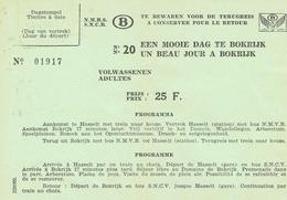 Billet De Train Een Mooie Dag In (un Beau Jour à ) Bokrijk 14/8/1972 Adulte, 25 F - Chemins De Fer