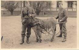 DEUTSCHES REICH - SOLDATEN Mit ESEL - Guerre 1939-45