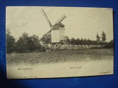 WOLVERTHEM : Moulin à Vents En 1903 - Wemmel
