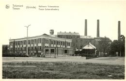 Tirlemont - Tienen - (Grimde) Raffinerie Tirlemontoise - Tiense Suikerrafinaderij. / F. Cailloux - Tienen