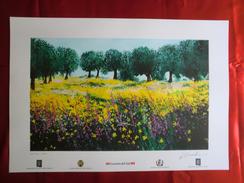 Foto Litografia GIOIA TAURO, OLIVETI Di Nello Cuzzola - PERFETTA - Litografia