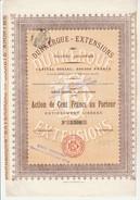 ACTION DE 100 FRS - DUNKERQUE -EXTENSIONS  -DIVISE EN 4000 ACTIONS  ANNEE 1911 - Actions & Titres