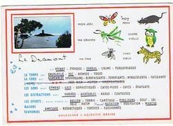 LE DRAMONT  ****       A   SAISIR  ******* - France