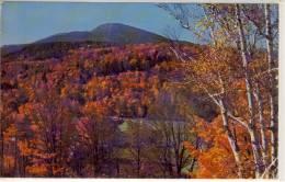 GORHAM, N.H. - Autumn At Pinkham Notch, Scene Near Glen House In White Mountains - White Mountains