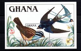 Hb-142 Ghana - Birds