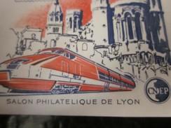 """Feuillet Souvenir CNEP """" RHONALPEX 1981, Salon Philatélique De LYON """"Timbre Europe  France  Blocs & Feuillets CNEP - CNEP"""