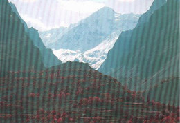 VNS414 Pakistan Rakaposhi Peaks Hunza Postcard